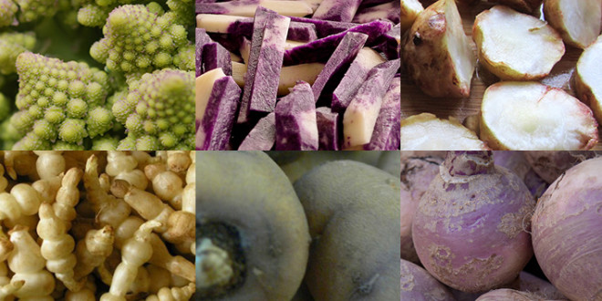 11 Forgotten Vegetables