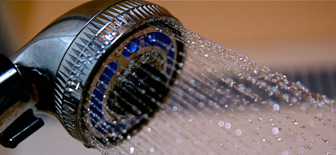 clean the shower head