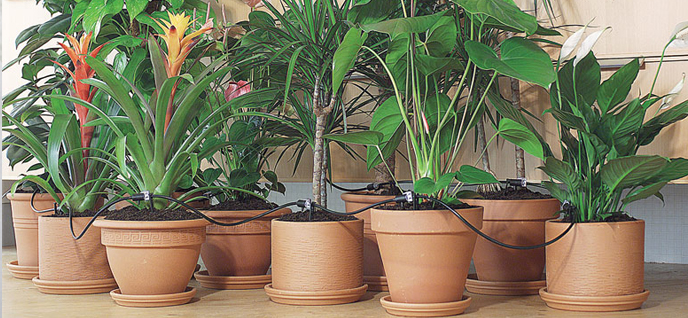 diy self watering system for houseplants do it your self. Black Bedroom Furniture Sets. Home Design Ideas