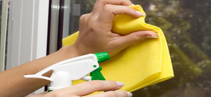 alternative window cleaners