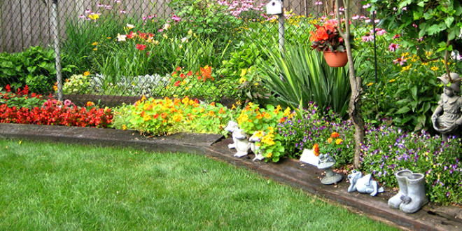 5 Types Of Plants To Choose For Your Small Garden Groomed Home