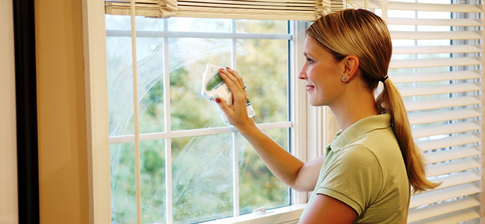 How Clean Windows Effectively Groomed Home